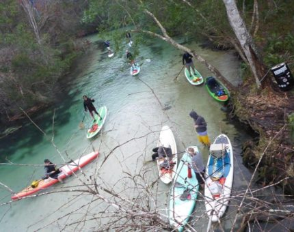 Weeki Wachee Eco Adventure