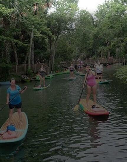Paddleboard Paradise Rental