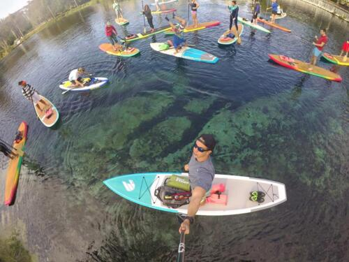 Manatee Paddle Tours Orlando